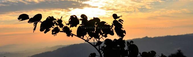 Sunset @ Sarkaghat – Mandi HP